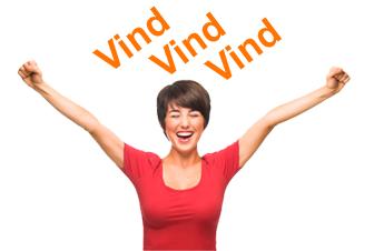 Konkurrence Vind Vingaver Hejninge Stillinge